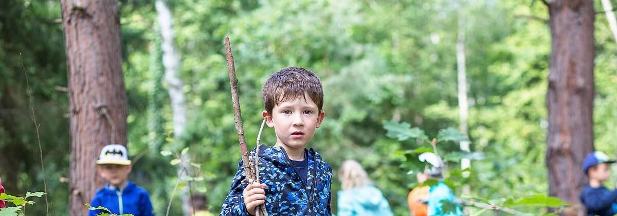 Ein Junge im Wald mit Stöcken in der Hand